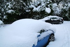 Corrado & Sagaris in Snow